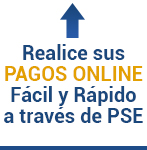 PSE-Pagos Online